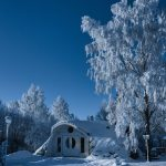 magick-green-house-winter-time_-1